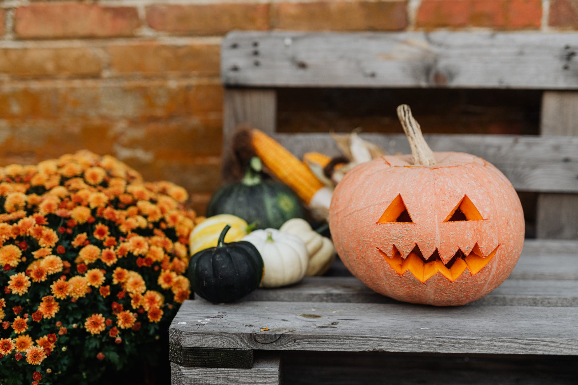 хелоуин - пакост или лакомство